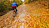 Cyclist(s) on Vermont's Missisquoi Valley Rail Trail - 2 -0403 - 72 ppi