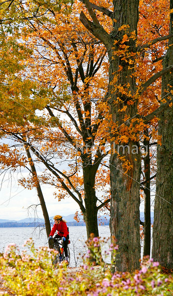 Cyclist at Kill Kare State Park on St  Albans Bay, Vermont-0101 - 72 ppi