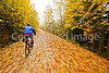 Cyclist(s) on Vermont's Missisquoi Valley Rail Trail - 2 -0423 - 72 ppi