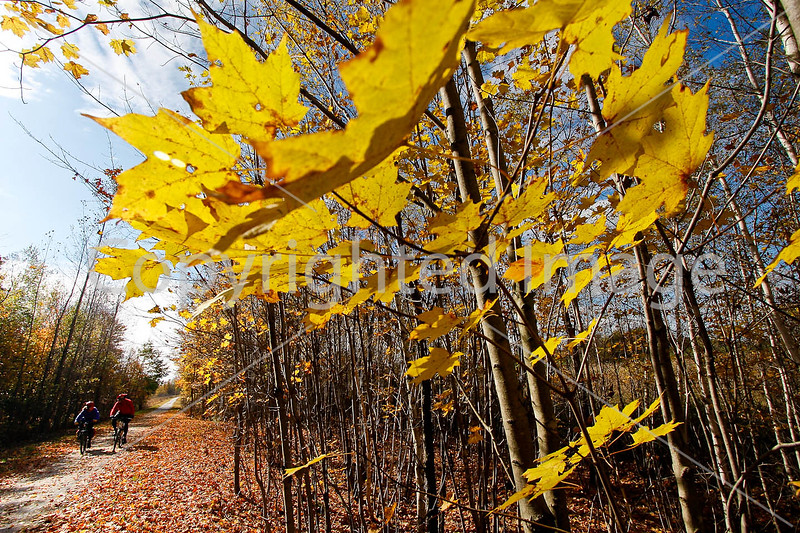 Cyclist(s) on Vermont's Missisquoi Valley Rail Trail - 2 -0233 - 72 ppi