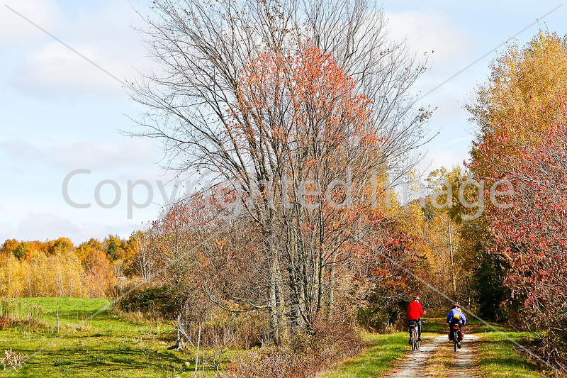 Cyclist(s) on Vermont's Missisquoi Valley Rail Trail - 3 -0051 - 72 ppi