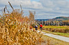Cyclist(s) on Vermont's Missisquoi Valley Rail Trail - 3 -0040 - 72 ppi-3