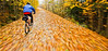 Cyclist(s) on Vermont's Missisquoi Valley Rail Trail - 2 -0423 - 72 ppi-3