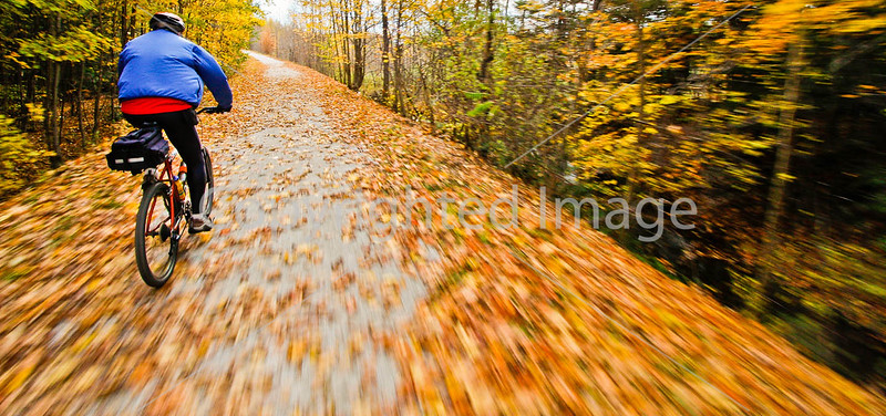 Cyclist(s) on Vermont's Missisquoi Valley Rail Trail - 2 -0427 - 72 ppi-2