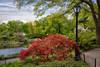 Central Park (#0301)