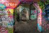 The Colourful World of Graffiti (#0445)
