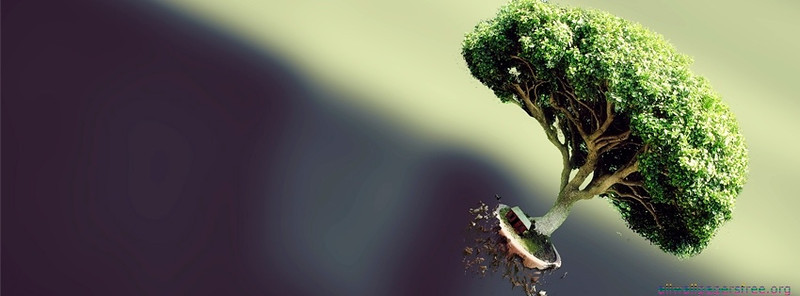 25 Amazing Facebook Covers 850 X 314 Px