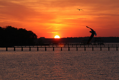 FLORIDA SUNSETS AND PIER PHOTOS