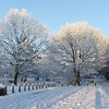 22.12.10. Winter Scene at Hoys Meadow Portadown.