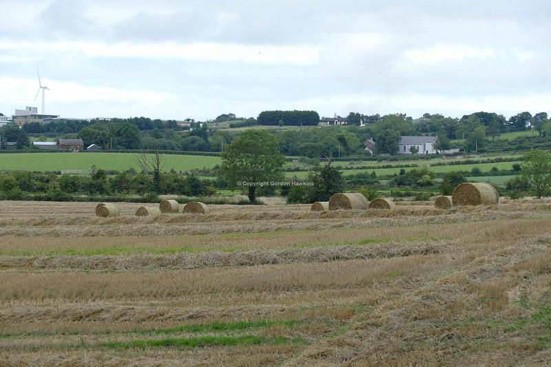 1.9.18. Hay Fields in Moira Co.Down.
