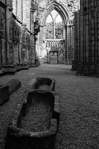 Holyrood Abbey I