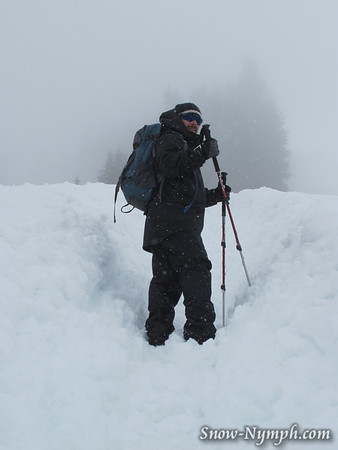 2011 (June 2) Pt 2:  Paradise to Panorama Point and beyond, Mt Rainier NP, WA