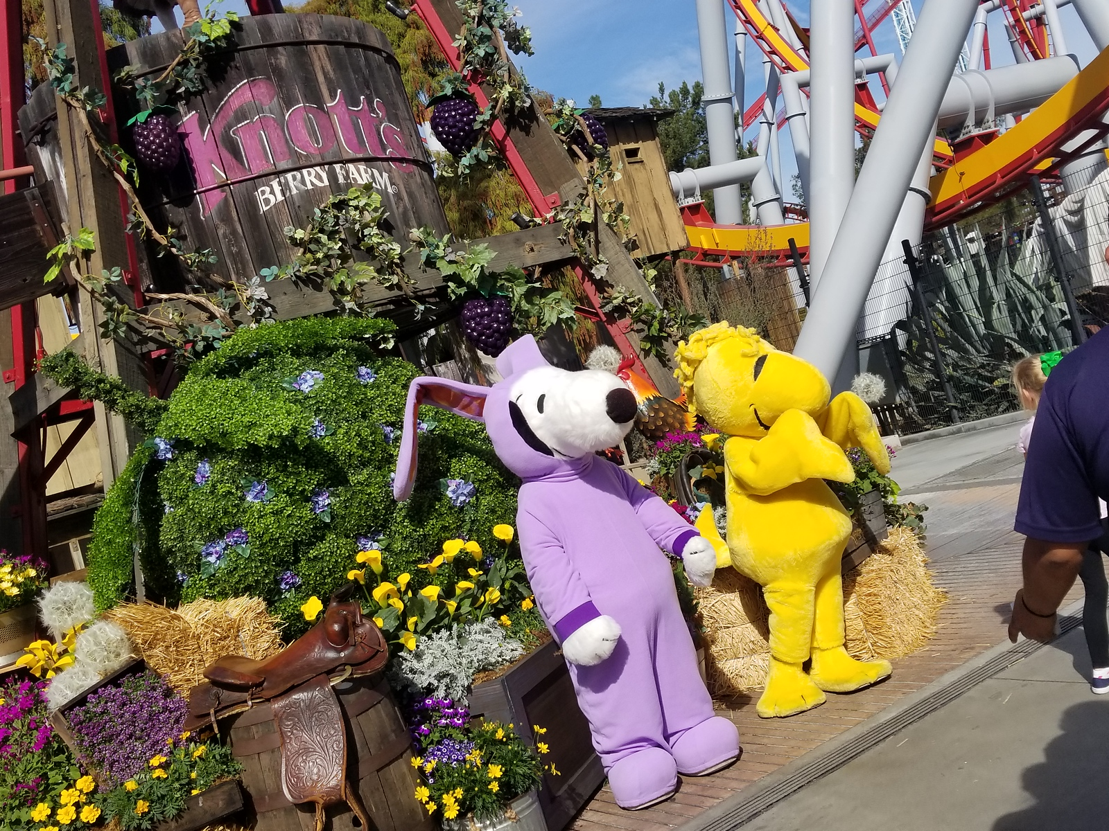 Details: KNOTT'S BOYSENBERRY FESTIVAL 2020 dates, menus, and more confirmed!