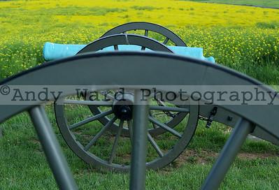 cannon_mustard_0508
