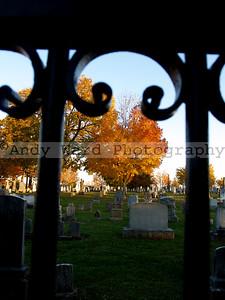 Cemetery_11_11