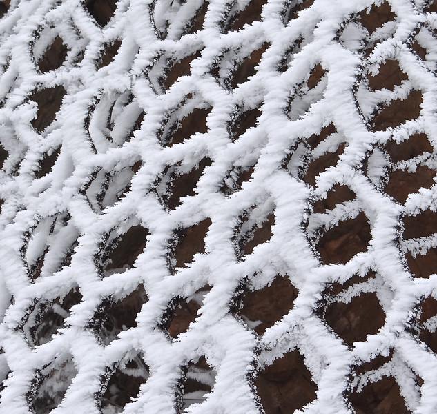 Hoar frost on nylon netting