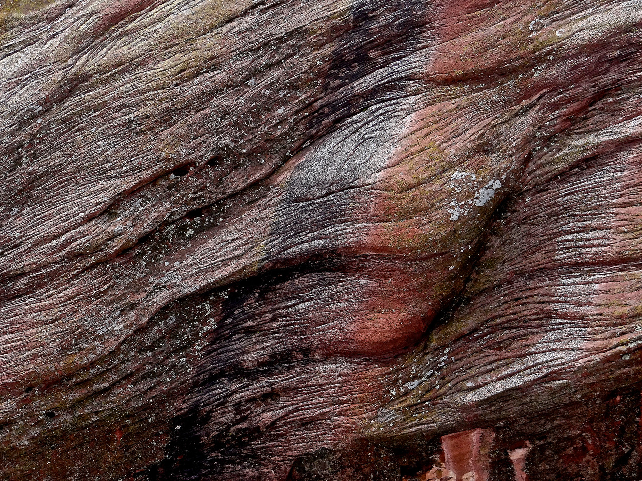 Wood grain patterns in the sandstone after a rain