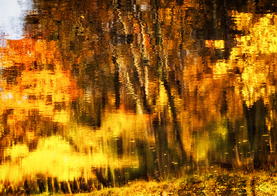Autumn Reflections - SeriesI 5)