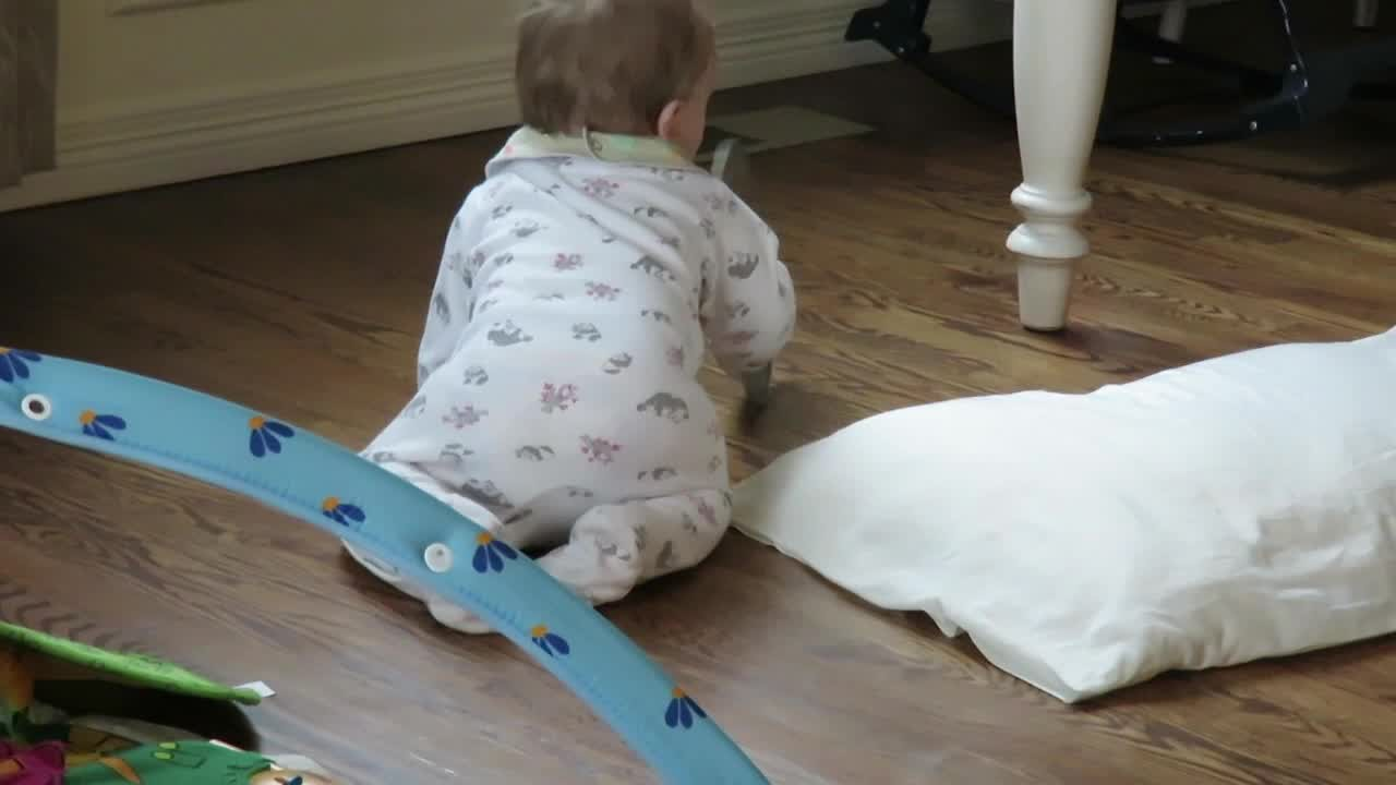 VIDEO: The cheapest  toys are the best
