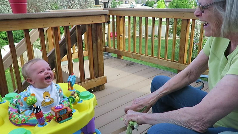 VIDEO:  Shucking and laughing- for some reason, Ben finds it hiLARious when Deda shucks corn