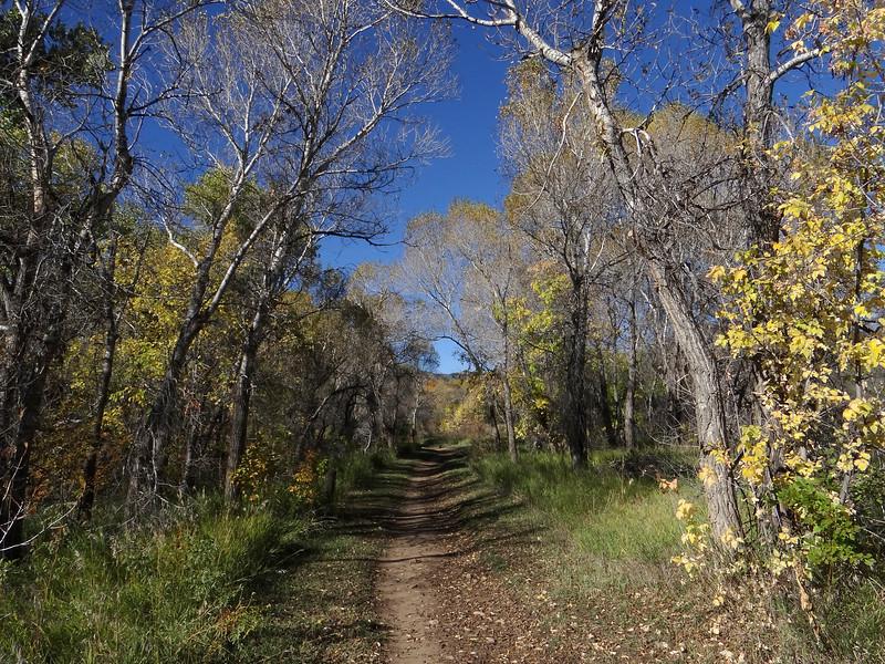 Peaceful fall afternoon, Bear Creek Lake Park