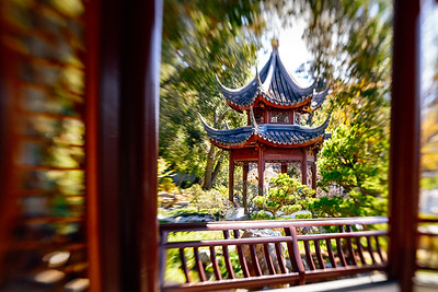 Chinese Garden at Huntington Gardens
