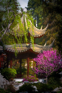 A Pagoda at the Chinese Garden in Huntington Gardens