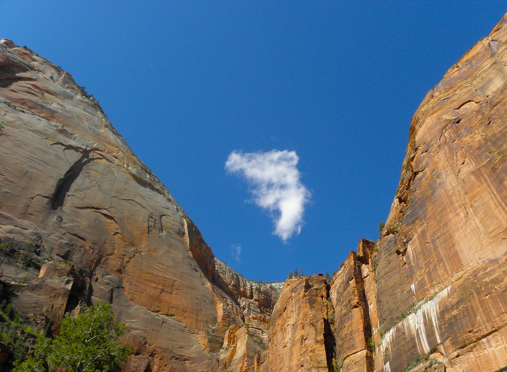 Duet, featuring Zion Canyon and white cloud