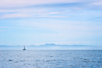 Sailing Boat Near Catalina Island