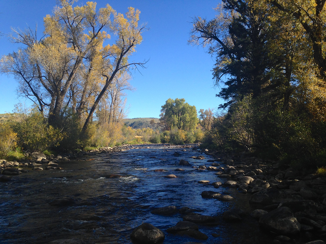 Elk River scene north of Steamboat Springs