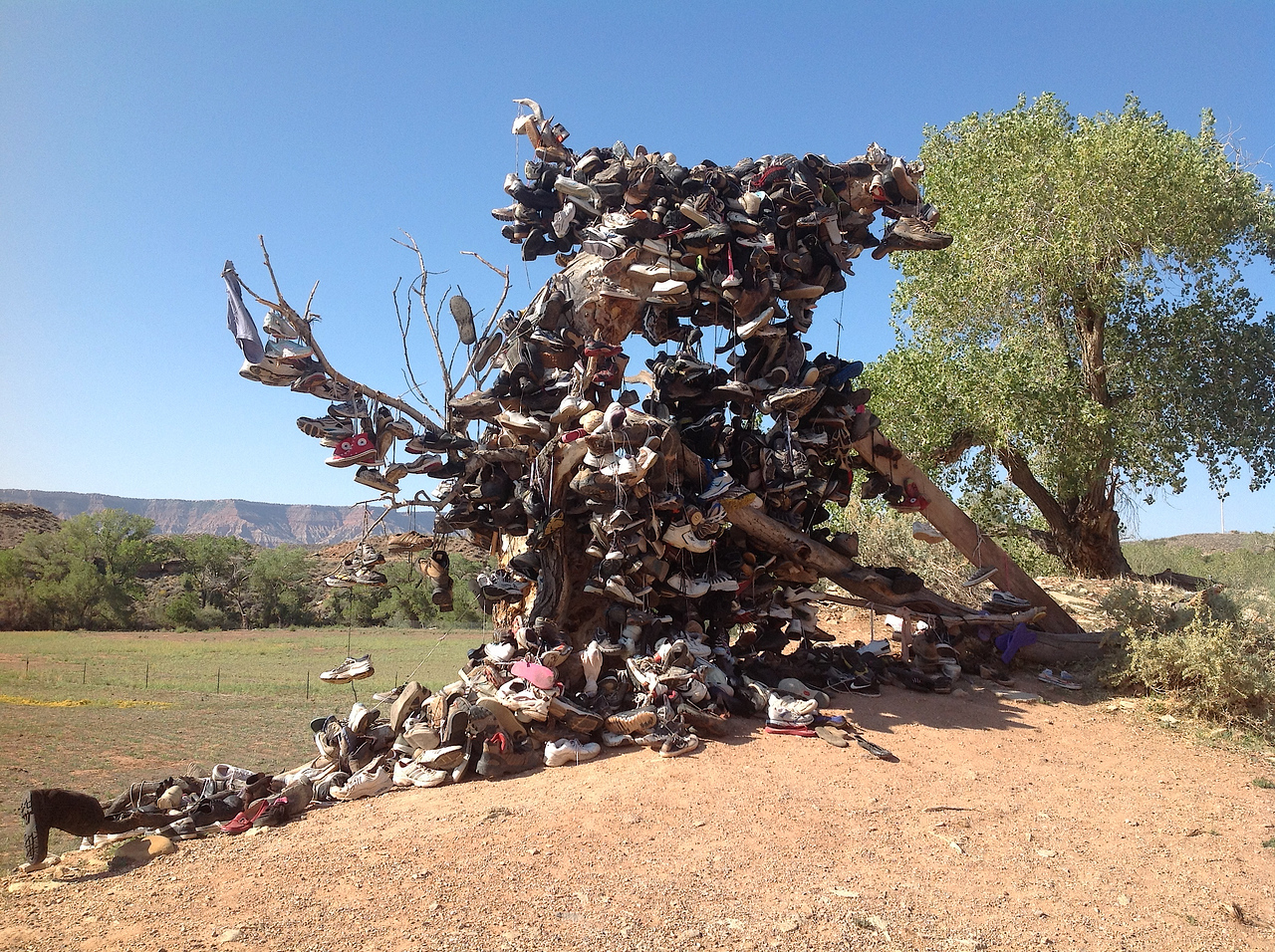 The Shoe Tree outside of Zion National Park. Legend has it that the shoes/boots are hung here in tribute to the Angels Landing hike in Zion National Park - because once you have completed this hair-raising hike, you may as well hang up your boots as nothing else exists to compare with it.