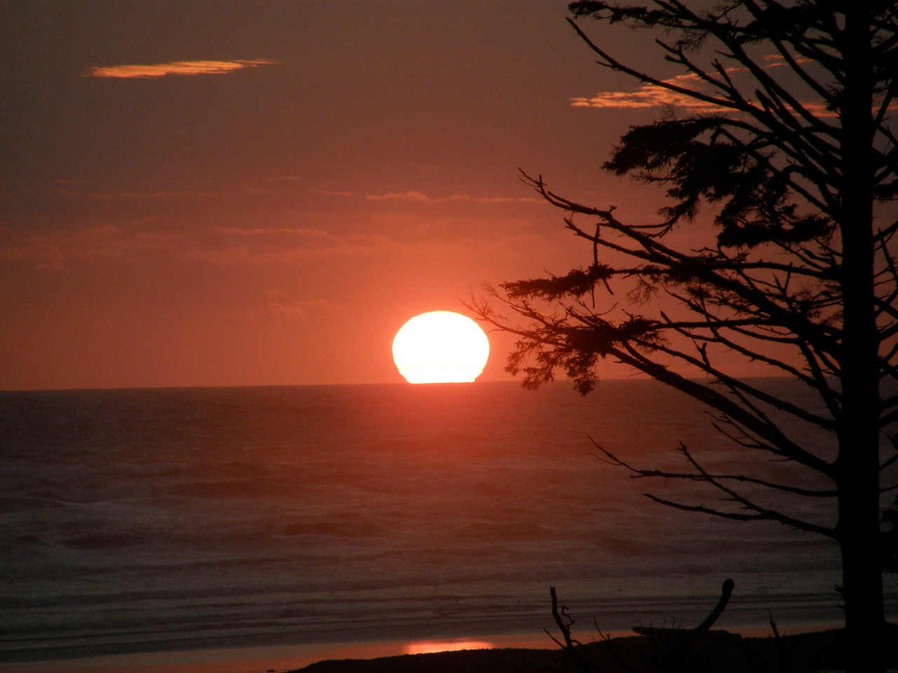 This was a gorgeous Pacific coast sunset in and of itself, but it held a surprise.