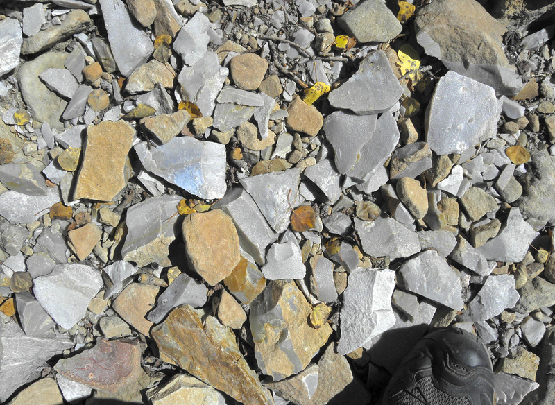In that quarry are 1000s of flakes where the paleo-Indians had worked the stone over millennia. (Shoe for scale.) I was standing where the man/woman who made the tools of the Mahaffey Cache stood 13,000 years ago. This made my heart go pitty-pat!