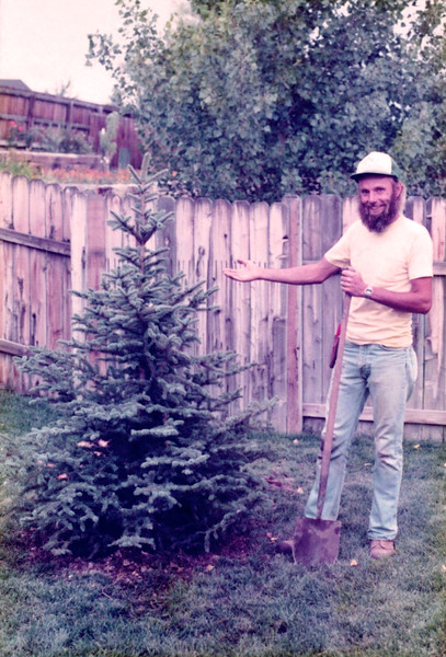 On a lighter note, when Amy was born (1982), the Arvada Center Chorale gave our family this tree to commemorate the happy event. (Which, by the way, happened during the wee hours after a Chorale dress rehearsal!) Here is Rich, a Chorale member and landscaper, after he and I planted this perfect little spruce.