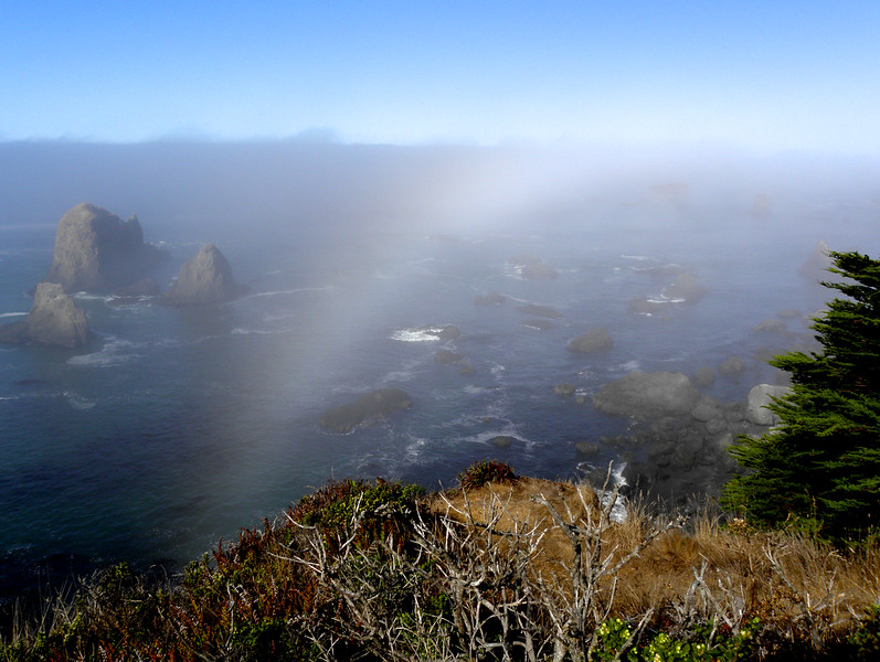"Yep, that's a fog bow off the famous Hwy 1 in California. As NASA says, ""The fogbow's lack of colors is caused by the smaller water drops ... so small that the wavelength of light becomes important. Diffraction smears out colors that would be created by larger rainbow water drops."""