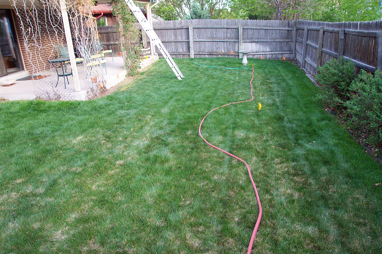 "The ""Before"" shot, laying out our backyard plans with hoses."