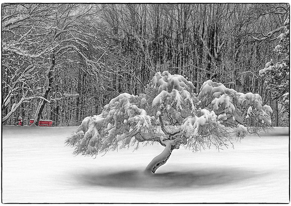 Snow Scenes - Series l (1)