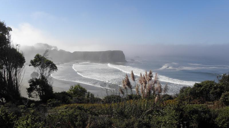 Pacific coast, early morning fog (iPad photo)