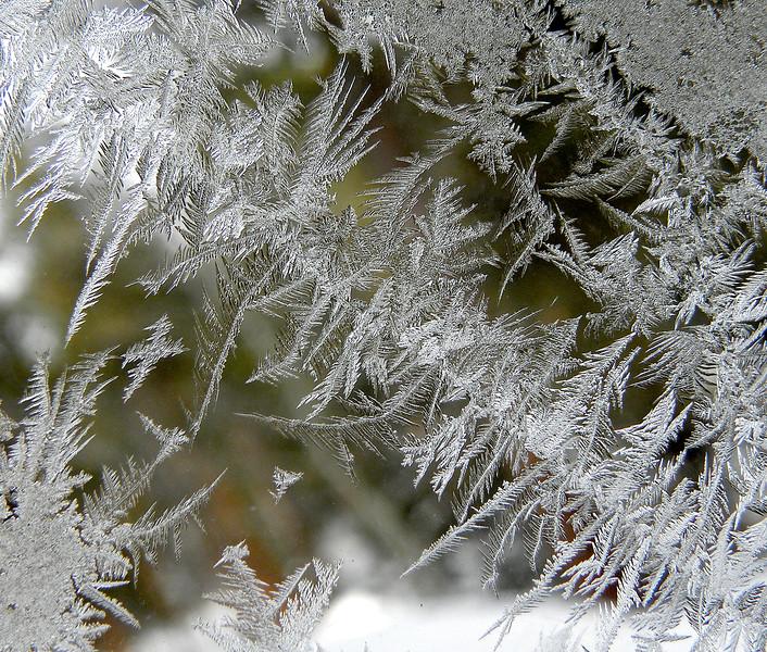 Frost flowers on window pane