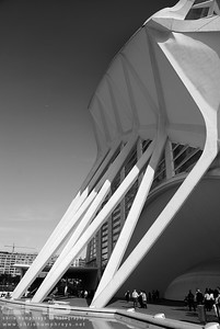 City of Arts and Sciences 3 - Valencia, Spain, Architect Santiago Calatrava