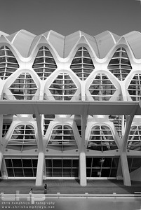 City of Arts and Sciences 1 - Valencia, Spain, Architect Santiago Calatrava