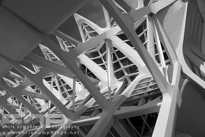 City of Arts and Sciences 2 - Valencia, Spain, Architect Santiago Calatrava