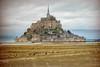 Normandy-9656-v2