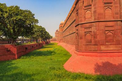 India-Delhi-1398-VP2