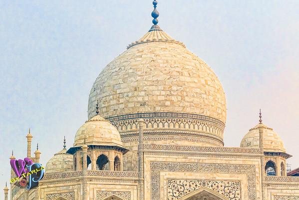 India-TS-Agra-1197-VP2