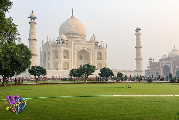 India-TS-Agra-1194