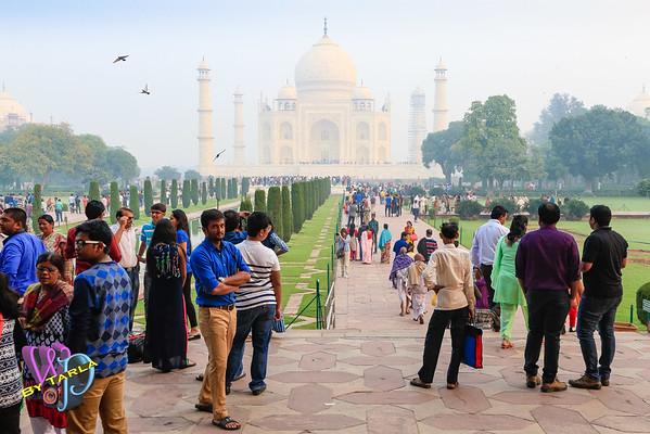 India-TS-Agra-1182