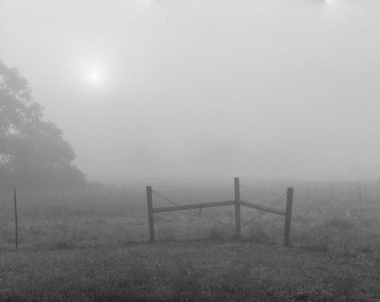 20170415 Fog