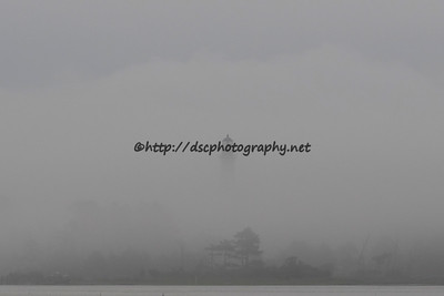 DSCPhoto_33804