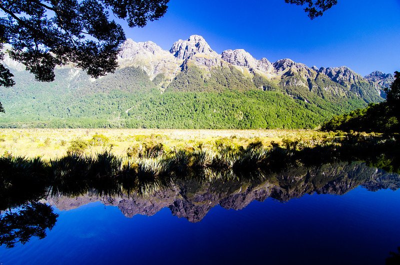 Mirror Ponds, Milford Road, Fiordland, New Zealand